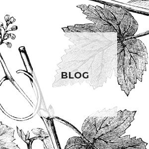 Helia-D Webáruház - Blog