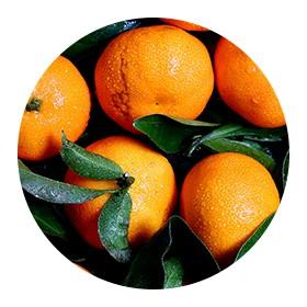 Helia-D Professional Napraforgó-Narancs