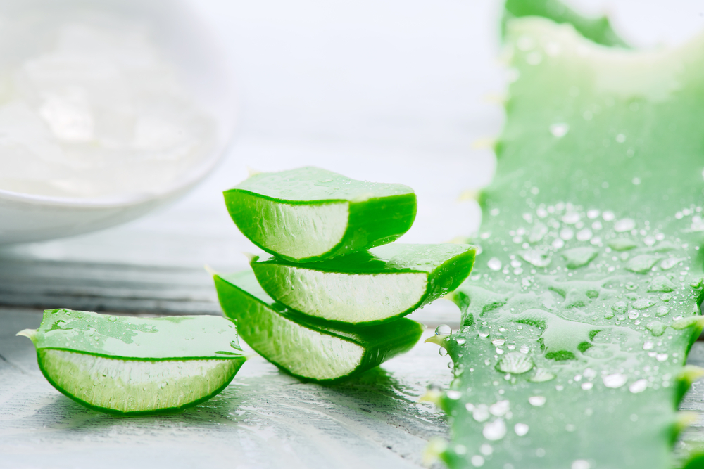 Az aloe vera gél hatásai a bőrre
