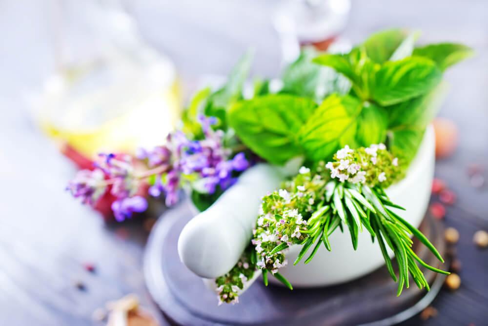 Természetes bőrápolás herba krém használatával