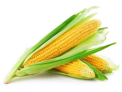 Kukorica fellevél
