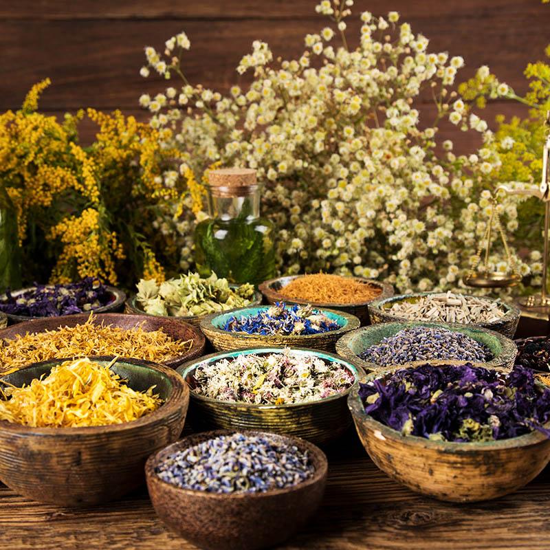Amit a gyógynövényekről tudni kell