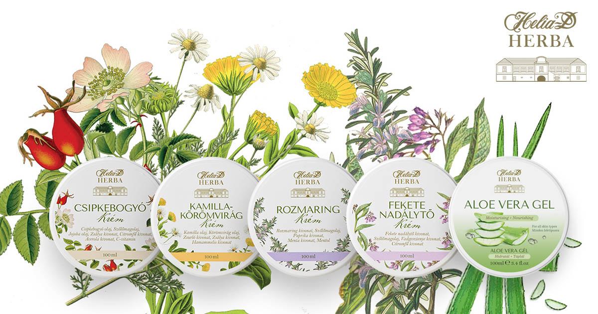 Gyógynövények a bőrbetegségek kezelésében