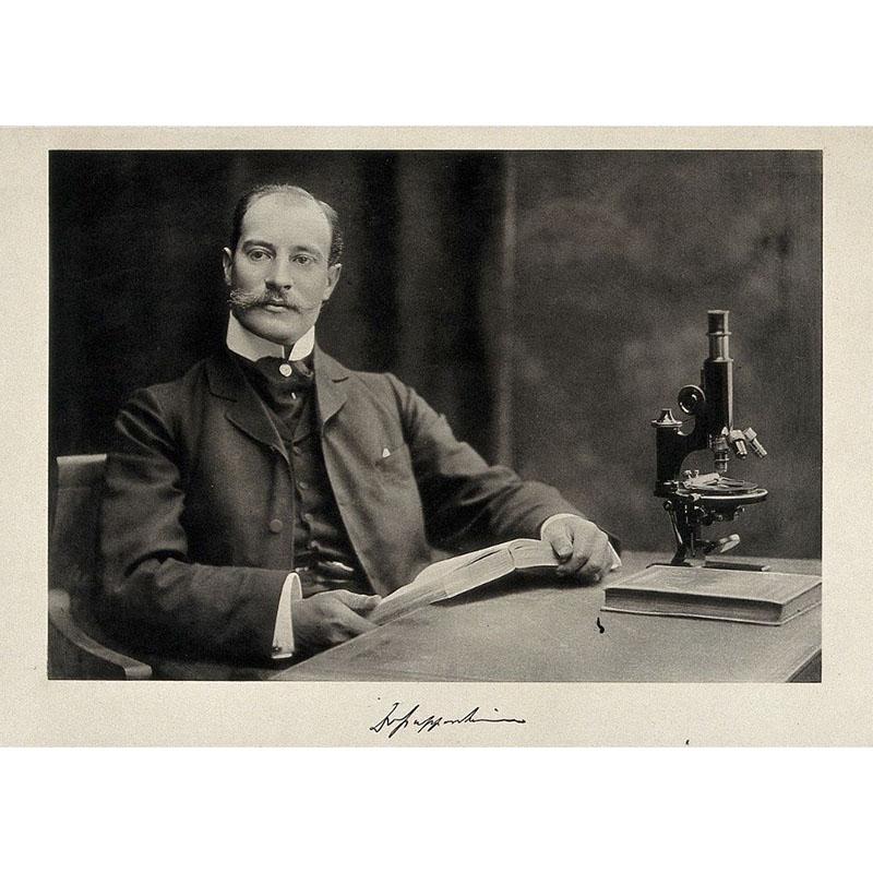 Artúr Pappenheim hematológus